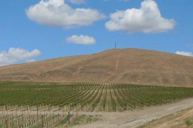 A scenic photograph of the Quintessence Vineyards